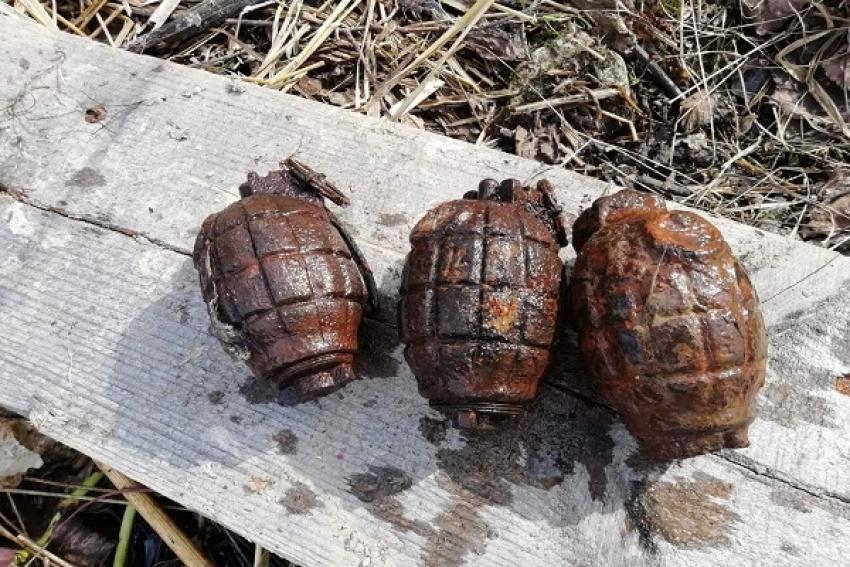 Гранаты, мины, патроны и артснаряды – «добыча» взрывотехников в Плесецком районе