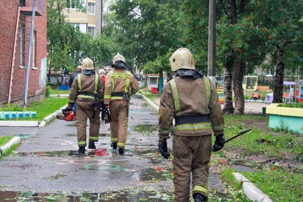Архангельские пожарные спилили аварийные тополя у школы в Соломбале
