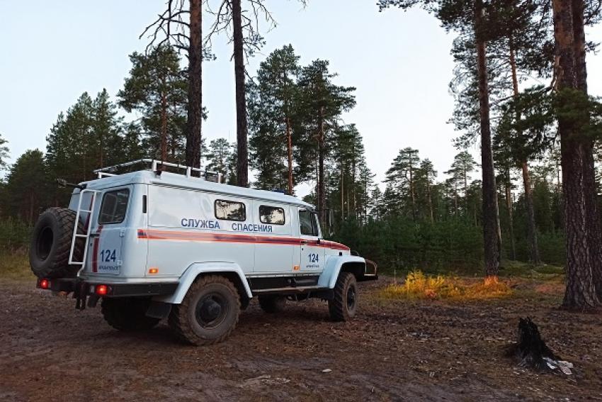 В лес за черникой и свежим воздухом. В Ленском районе ищут пропавшую 89-летнюю женщину