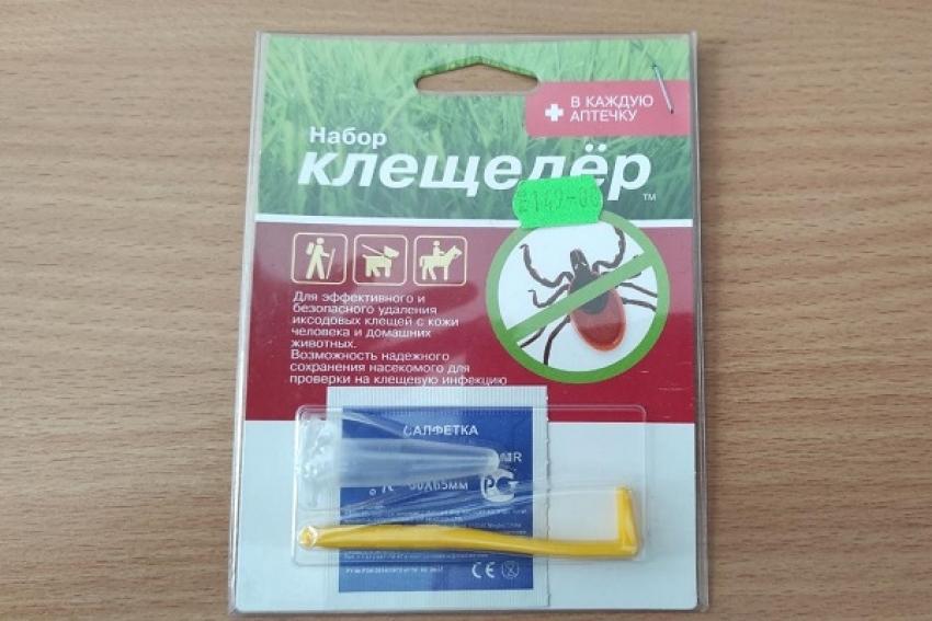 В Архангельской области увеличилось число обращений по поводу присасывания клещей
